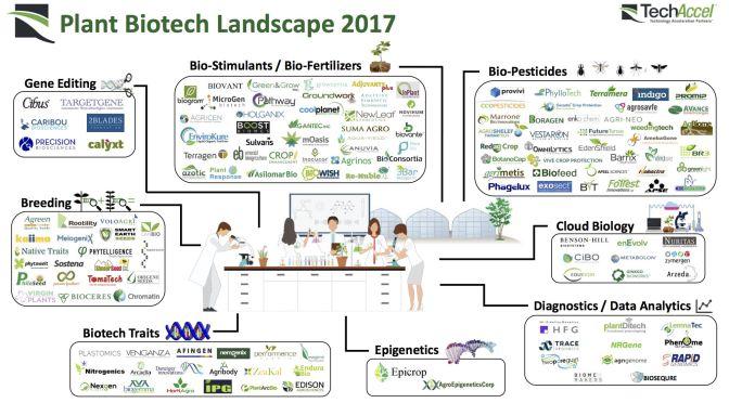Agrifood companies using blockchain