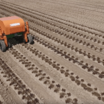 FarmWise Raises $5.7m Seed Round for Vegetable Weeding Robot