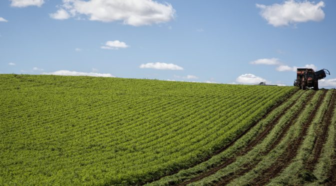 Agtech Sustainable Farming