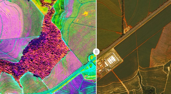 The Growing Impact of Hyperspectral Imagery on AgriFood Tech