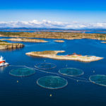 UPDATE: Aquaculture Startup Ecosystem Takes a Step Forward with New Accelerator
