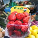 Q&A: Driscoll's Head of Emerging Technology On Harvesting Robotics and Open Innovation