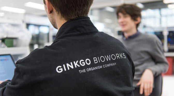 BREAKING: The $100m Bayer, Ginkgo Bioworks Joint Venture Has a Name, a CEO, and a Plan