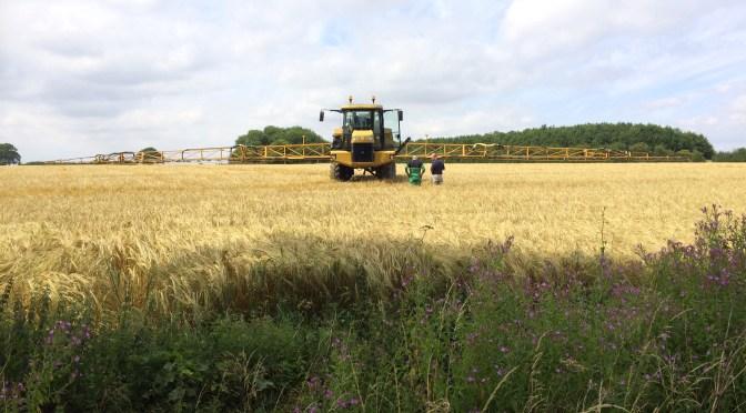 Y combinator agriculture