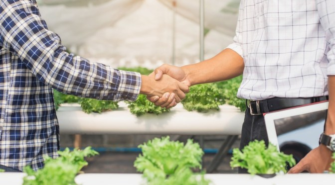 BREAKING EXCLUSIVE: Contain Inc Launches First Insurance Service for Indoor Farmers