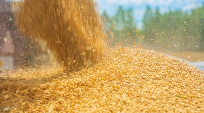 Brazilian Ag Marketplace Raises $630k Seed Round from Monsanto Growth Ventures and Others