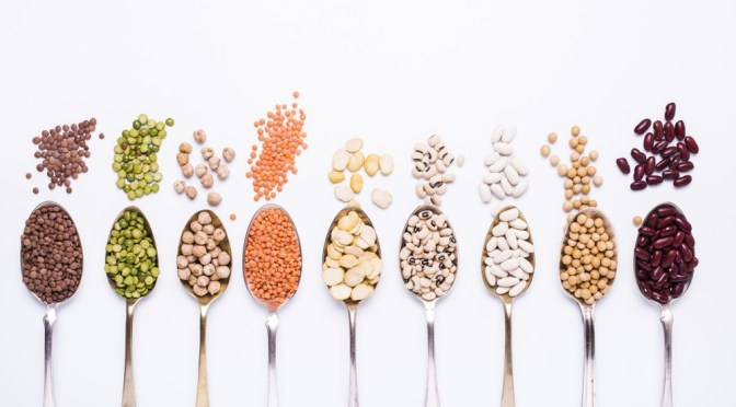 Equinom Raises $4m to Improve Plant Proteins Using Computational Breeding, No Gene Editing