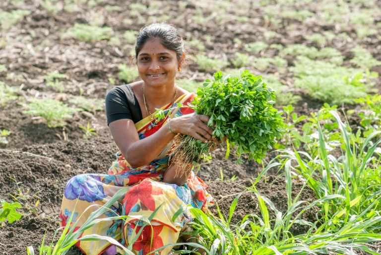 Indian AgriFood Supply Chain Sensor Startup AgNext Raises $2