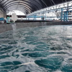 UPDATE: Aqua-Spark Invests in 2 Aquaculture Tech Startups: BioFishency's $2.4m Series A & Molofeed