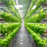 The Economics of Local Vertical and Greenhouse Farming Are Getting Competitive