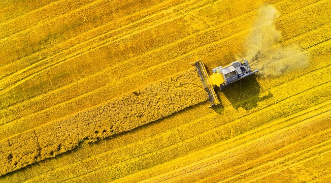 A Guide to Germany's Agtech Ecosystem: Government Support Belies Limited Investor Pool