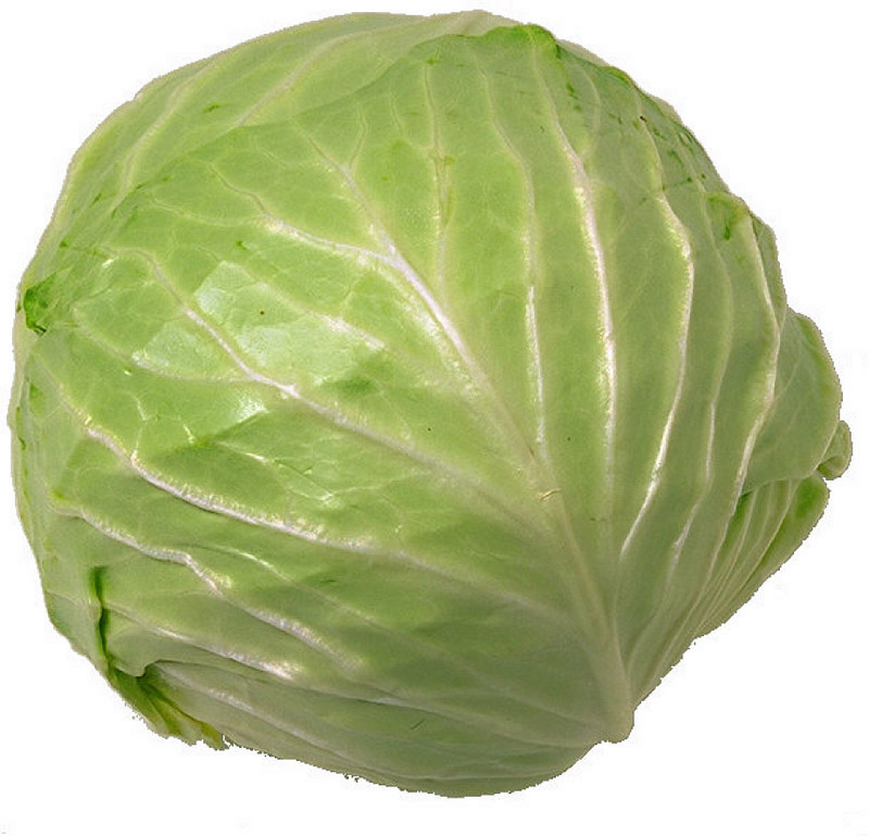 The 4 Day Diet Cabbage Soup (1/3)
