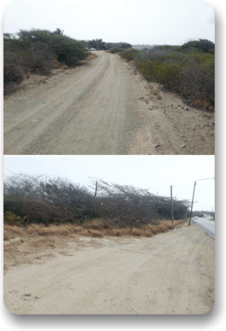 AggreBind road designs Aruba Road with Caliche base