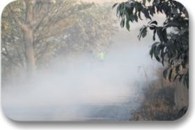 Dust control for environment safety