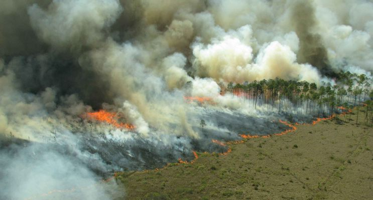 firebreaks with AggreBind soil stabilization