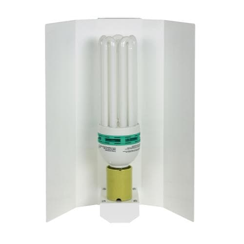 Fluorescent Fixture with Lamp