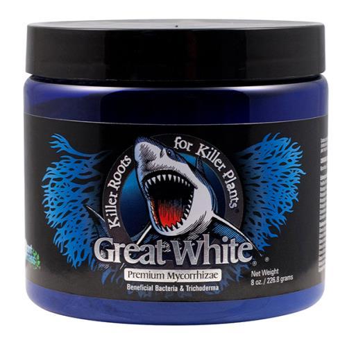 Great White – Powder