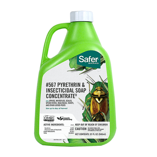 Pyrethrin & Insecticidal Soap