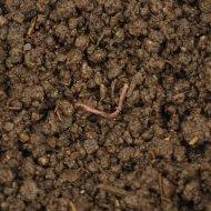Vermicompost – Colorado Worm Company