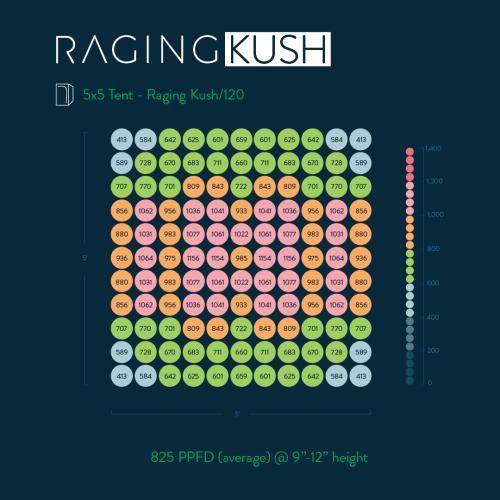 Raging Kush