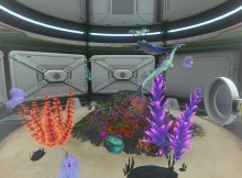 subnautica-fishes.jpg