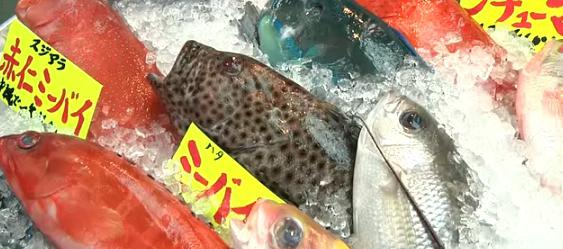 公設市場魚屋