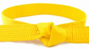Yellow Belt IT