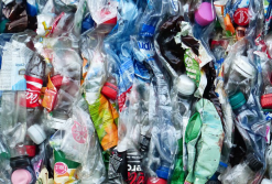 The big clean up: Tackling waste and recycling at summer events