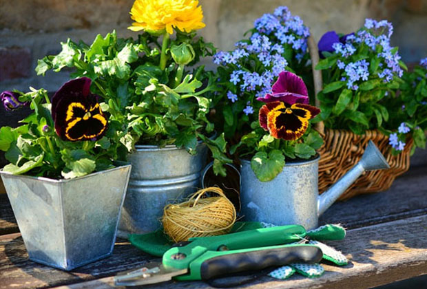national garden month and garden waste