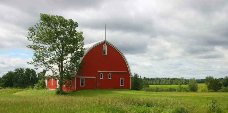 agriculture architecture barn building