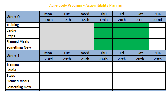 Accountability Planner Pic