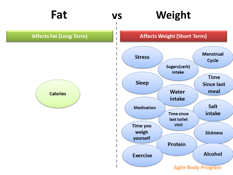 Fat vs Weight