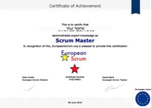 Expert Scrum Master