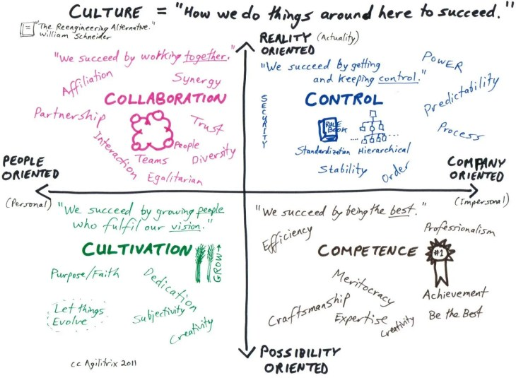 Schneider Culture Model