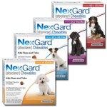 Flåter og unge hunde – NexGard