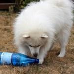 Aktivering med en flaske