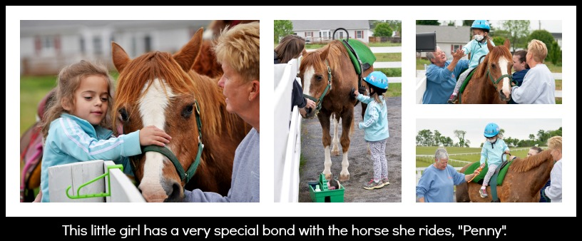 Special bond collage