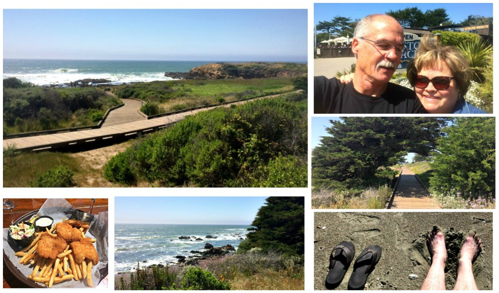 cambria collage