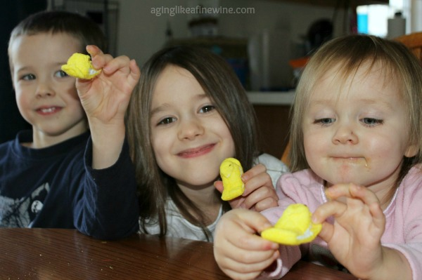 Chldren's chick craft