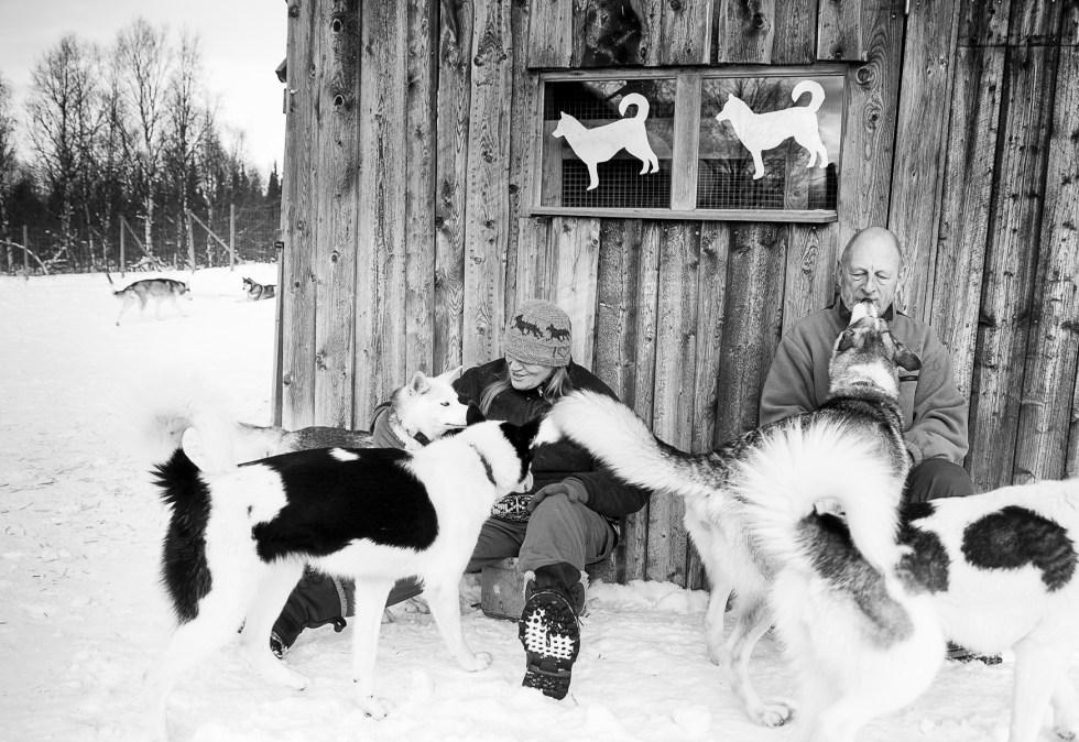 20160229 Huskeys Zweden 3183zwartwit