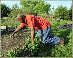 Gardening alone