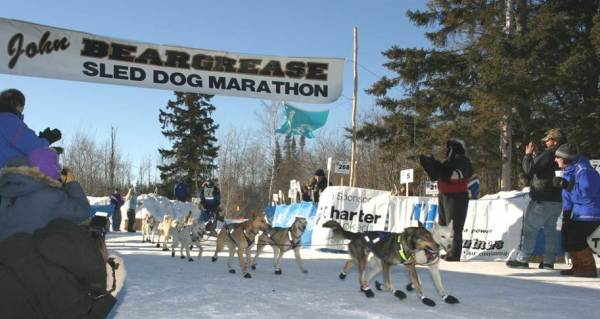 Strongman Mark Black is a retired dog musher and 2005 winner of the John Beargrease Sled Dog Marathon