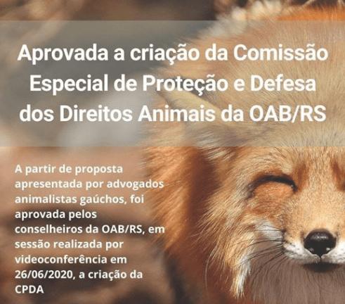 OAB/RS aprova criação de Comissão Especial de Proteção e Defesa dos Direitos dos Animais