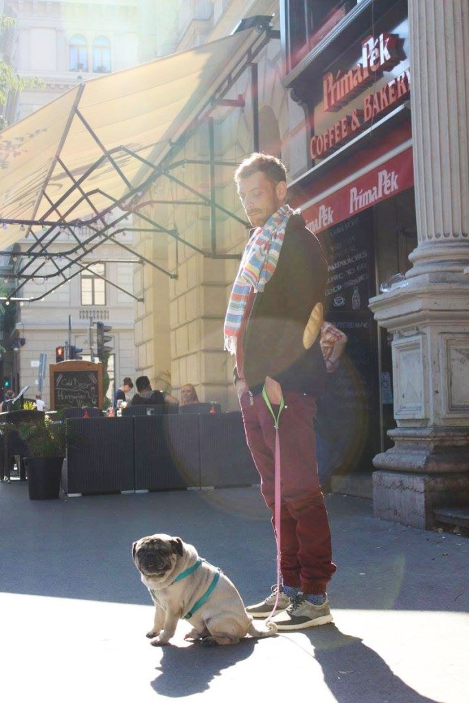 agirlnamedclara handsome man with his dog pug budapest hungary