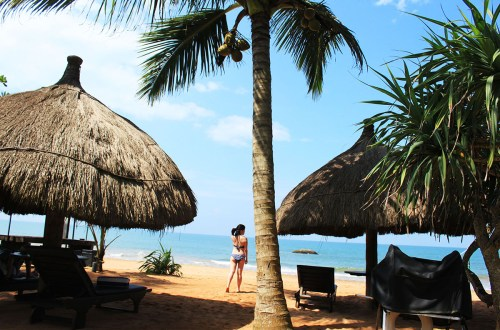 sea rock villa bentota sri lanka girl in bikini backside with beach hut and coconut tree blue sky agirlnamedclara