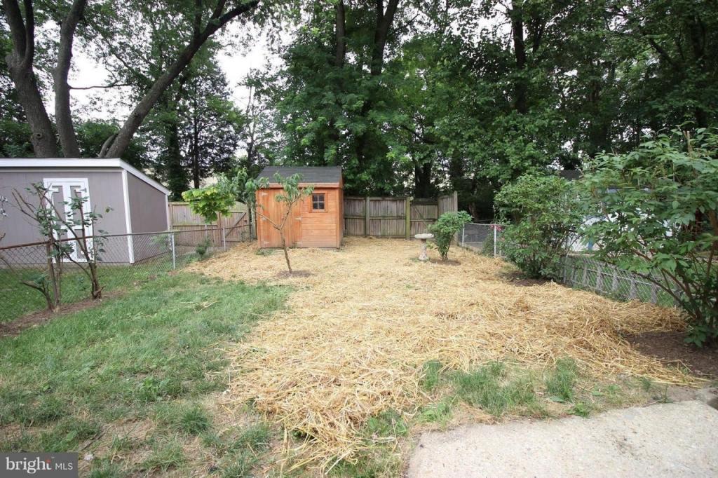 backyard with straw