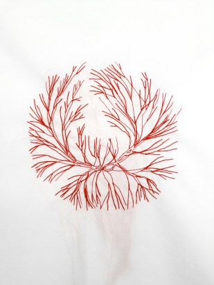 VEINS # 10 / sewed drawing with red thread on white fabric / 50x50 cm / 2013