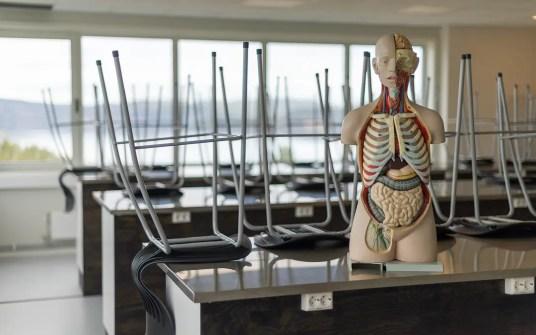 Naturfag med anatomisk dukke - og ingen elever