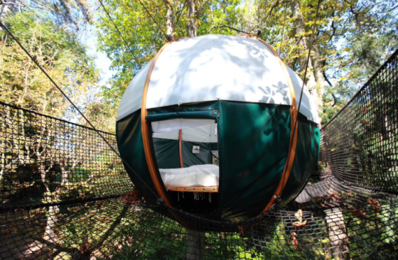 Airbnb Treehouse France