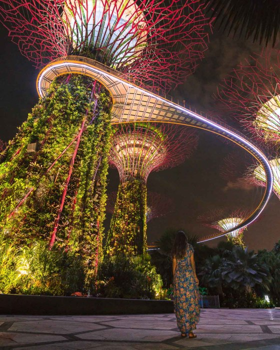 Gardens by the bay light show